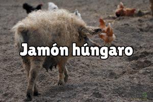Jamón húngaro: qué es y en qué se diferencia del jamón ibérico